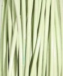 4472Blossom Green